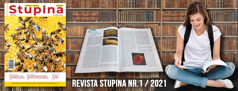 "Revista ""Stupina"""